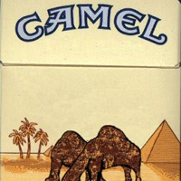 prix des paquets de cigarettes de camel tarif. Black Bedroom Furniture Sets. Home Design Ideas